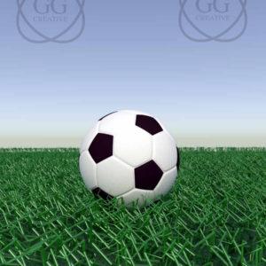 vp balón fútbol césped 2