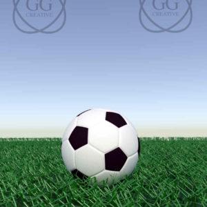 vista-balón-fútbol-césped-3
